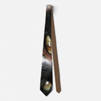 Cat Eyes Tie