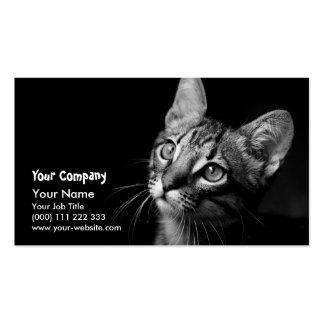 Cat Face Business Card