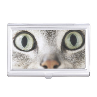 Cat face case for business cards