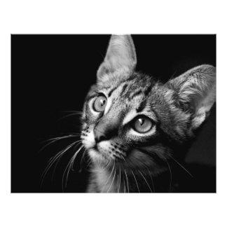 Cat Face Flyer