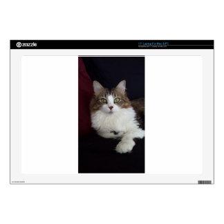 Cat Face Laptop Skins