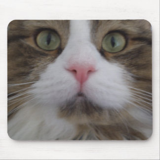 Cat Face Mouse pad