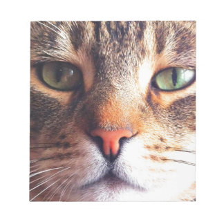 Cat Face Notepad