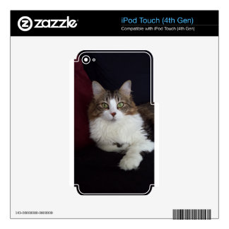 Cat Face iPod Touch 4G Skin