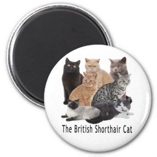Cat Family British Shorthair Fridge Magnet