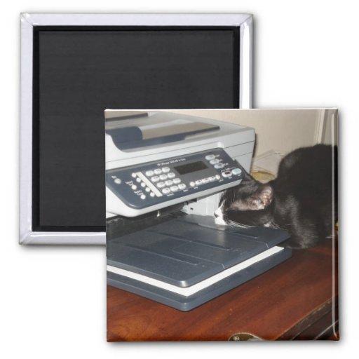 Cat Fax 2 Inch Square Magnet