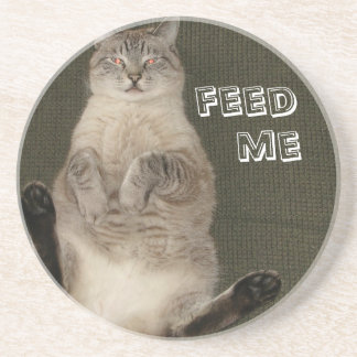 "Cat ""FEED ME"" Coaster"