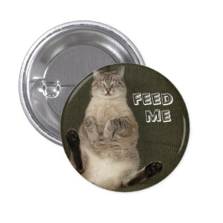 Cat FEED ME Round Button