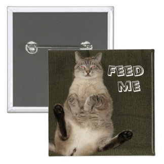 Cat FEED ME Square Button