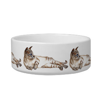 cat feeding bowl