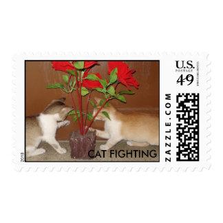 CAT FIGHTING POSTAGE