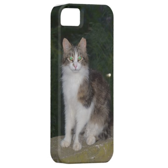 Cat  & Firefly iPhone SE/5/5s Case