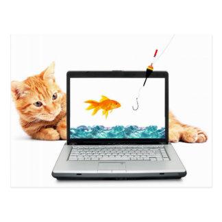 Cat Fishing Digitally Postcard