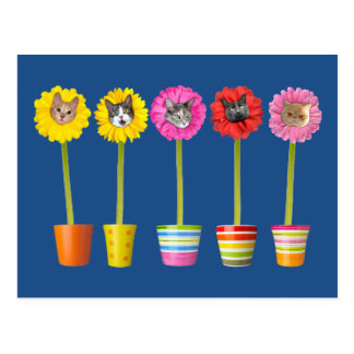 """Cat Flower"" Garden LOL Funny Postcard"