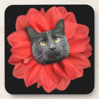 """Cat Flower"" Red LOL Funny Drink Coaster"