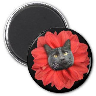"""""""Cat Flower"""" Red LOL Funny Fridge Magnet"""