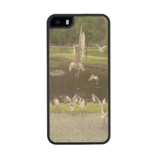 Cat flying a Seagull Carved® Maple iPhone 5 Slim Case