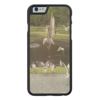 Cat flying a Seagull Carved® Maple iPhone 6 Slim Case