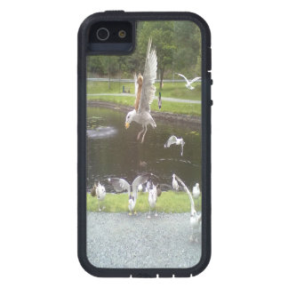Cat flying a Seagull iPhone 5 Case