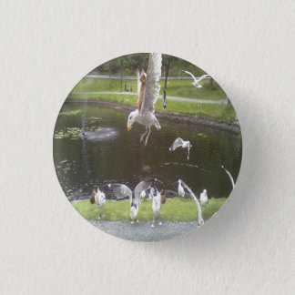 Cat flying a Seagull Pinback Button