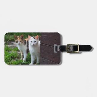 Cat Friends Adventure Bag Tag