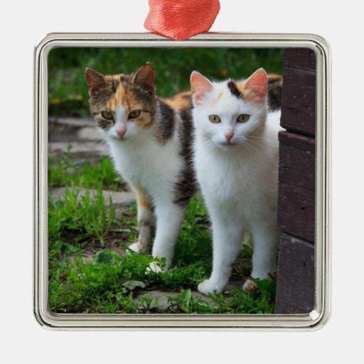 Cat Friends Adventure Metal Ornament