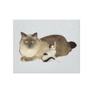 Cat Friends Canvas Print