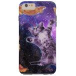 cat, meme, space cat, laser cat, purple cat, meme