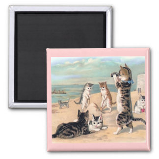 Cat Fun at the Beach Magnet Refrigerator Magnets