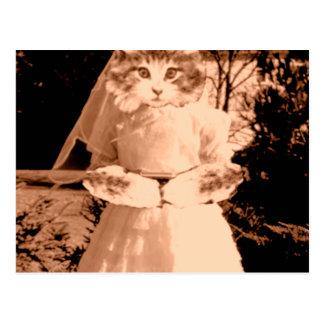 Cat Gal Wedding Postcard