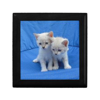 Cat Gifts Jewelry Box