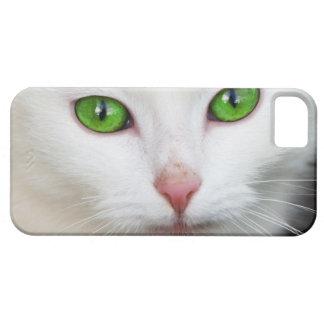 Cat Green Eyes ~ iPhone Case
