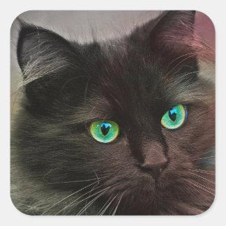 Cat Green Eyes Square Sticker