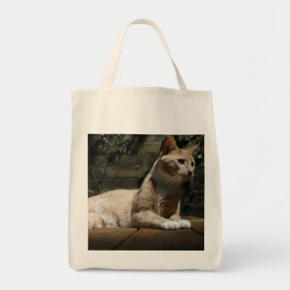 Cat Grocery Tote Canvas Bag
