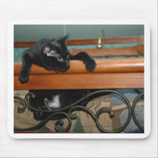 Cat-hangin in there mouse pad