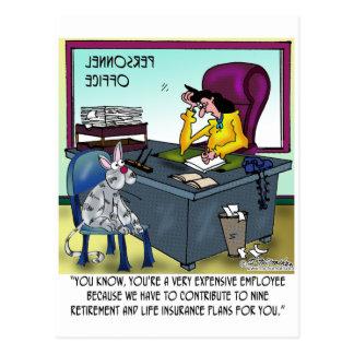 Cat Has 9 Life Insurance Plans Postcard