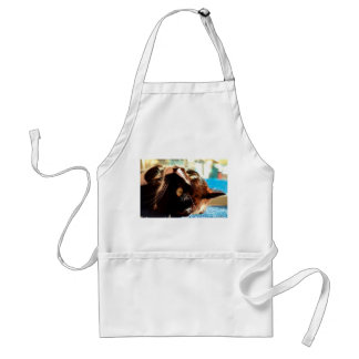 cat head in sunlight neat animal feline image adult apron