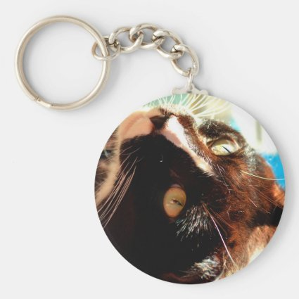 cat head in sunlight neat animal feline image keychains