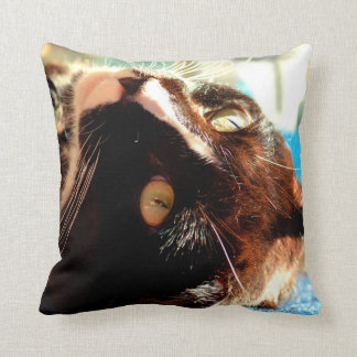 cat head in sunlight neat animal feline image throw pillow