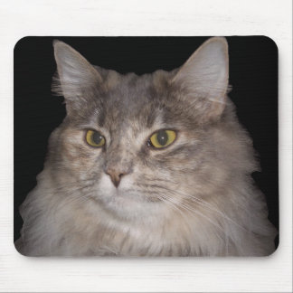 Cat Head on Mouse Pad