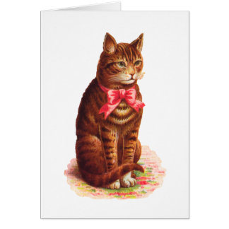 Cat Hello Card - Customizable