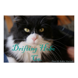 Cat hobo poster