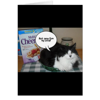 Cat Humor Greeting Card
