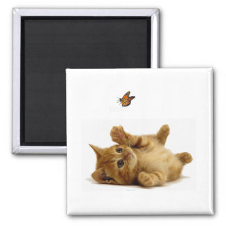 Cat image for 2 Inch Square Magnet