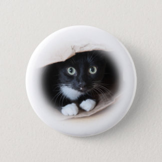 Cat in a bag button