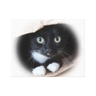 Cat in a bag canvas print