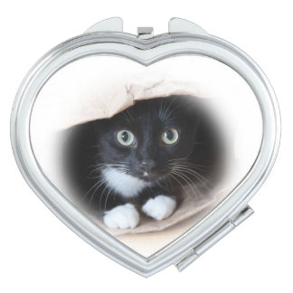Cat in a bag compact mirror