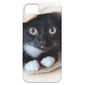 Cat in a bag cover for iPhone 5/5S