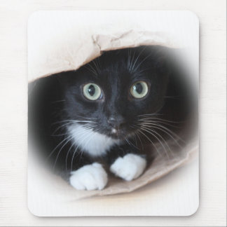 Cat in a bag mouse pad