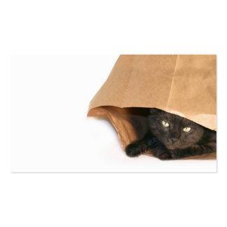 Cat in a bag profile card
